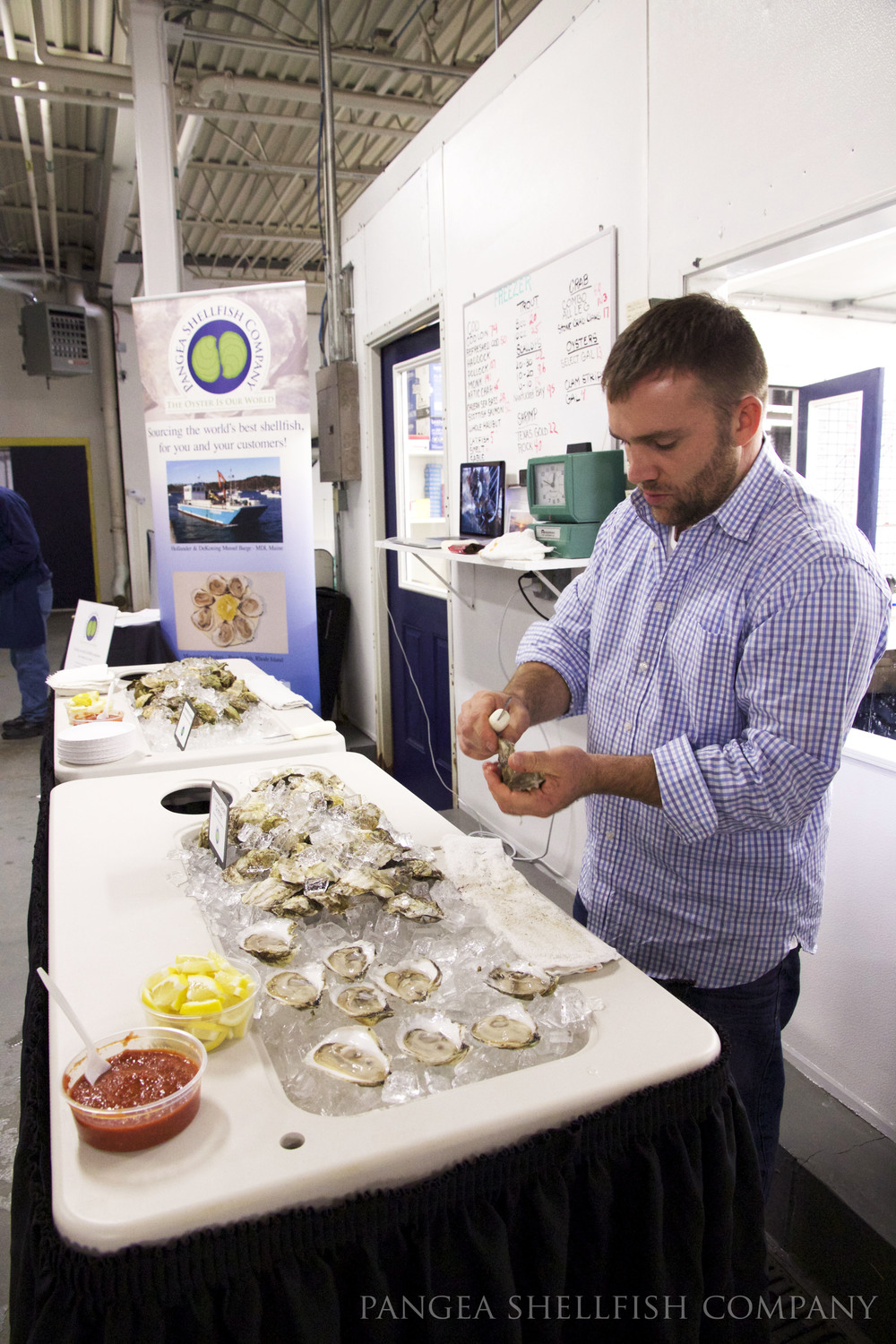 Ben shucking Standish Shore Oysters.