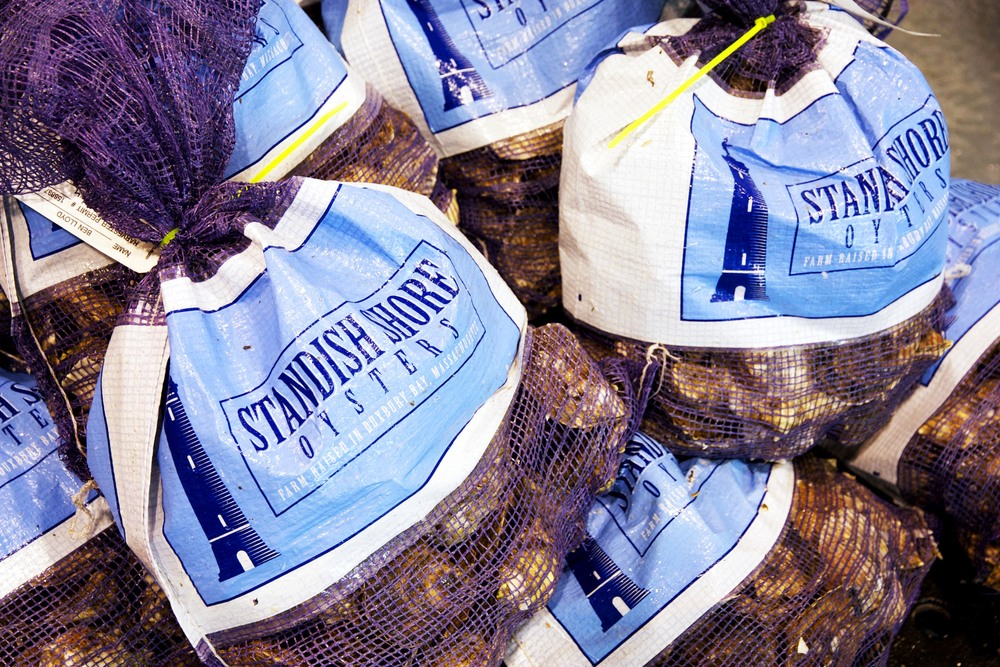 Standish Shore Bags.jpg