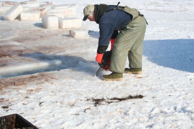 Ice_Fishing_033.jpg