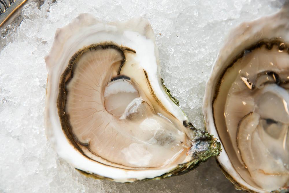 Pangea Shellfish Cultured Onset 3.jpg