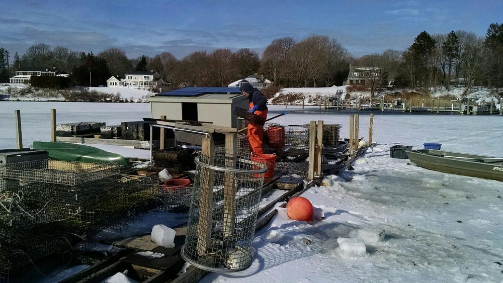 Ninigret Oyster Farm in Rhode Island