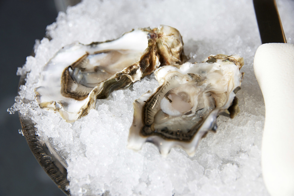 Pangea Shellfish Pickering Pass Oysters 2.jpg