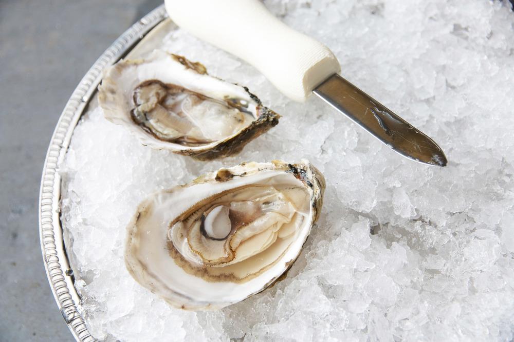 Pangea Shellfish Riptide Oyster 2.jpg