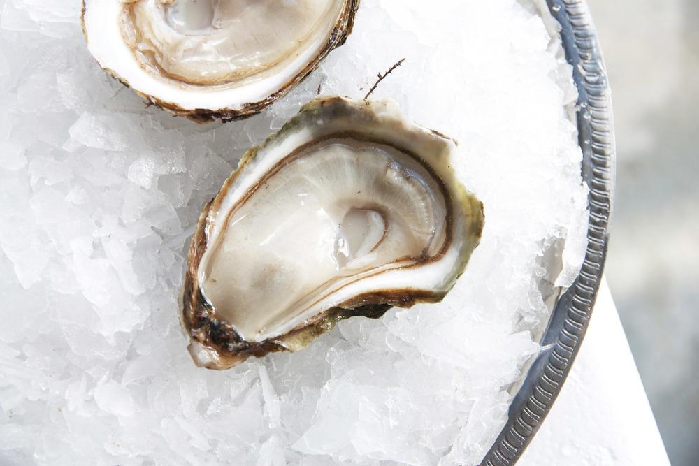 Pangea Shellfish Summerside Oyster.jpg