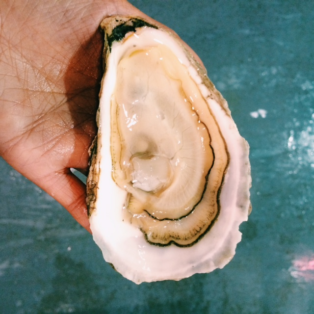 april 2015 shucking.jpg