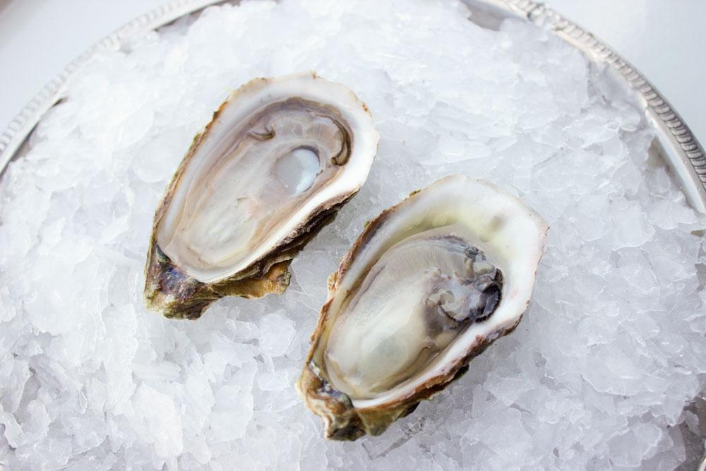 Malpeque-Oyster-Pangea-Shellfish-3.jpg