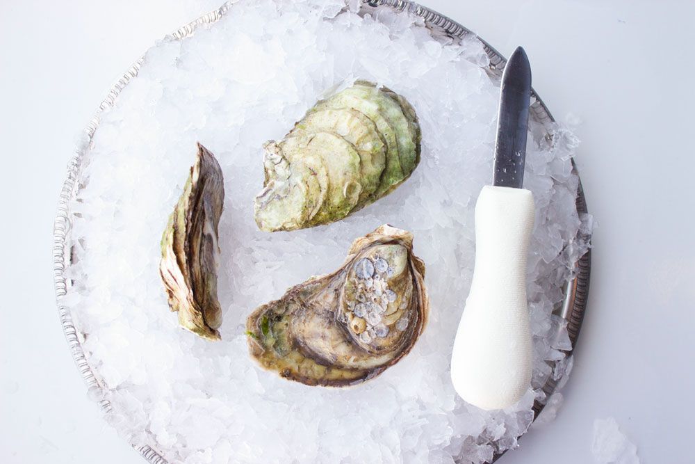 Malpeque-Oyster-Pangea-Shellfish.jpg