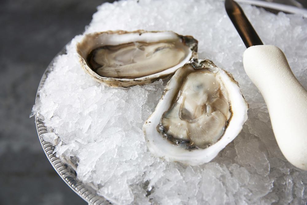 Pangea Shellfish Bristol Bay Oyster.jpg