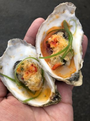 Spindrift Oysters — The Oyster Is Our