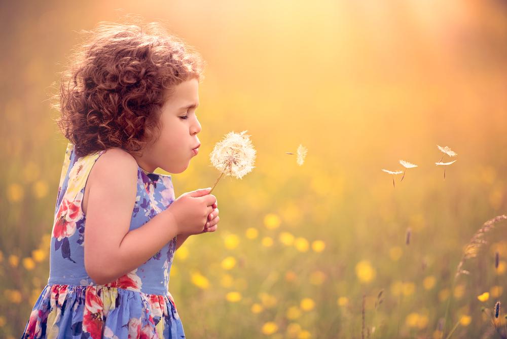 Children's portrait photographer London | blowing dandelion seeds
