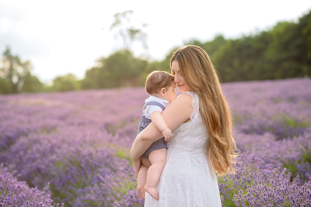 Family photos at lavender fields UK