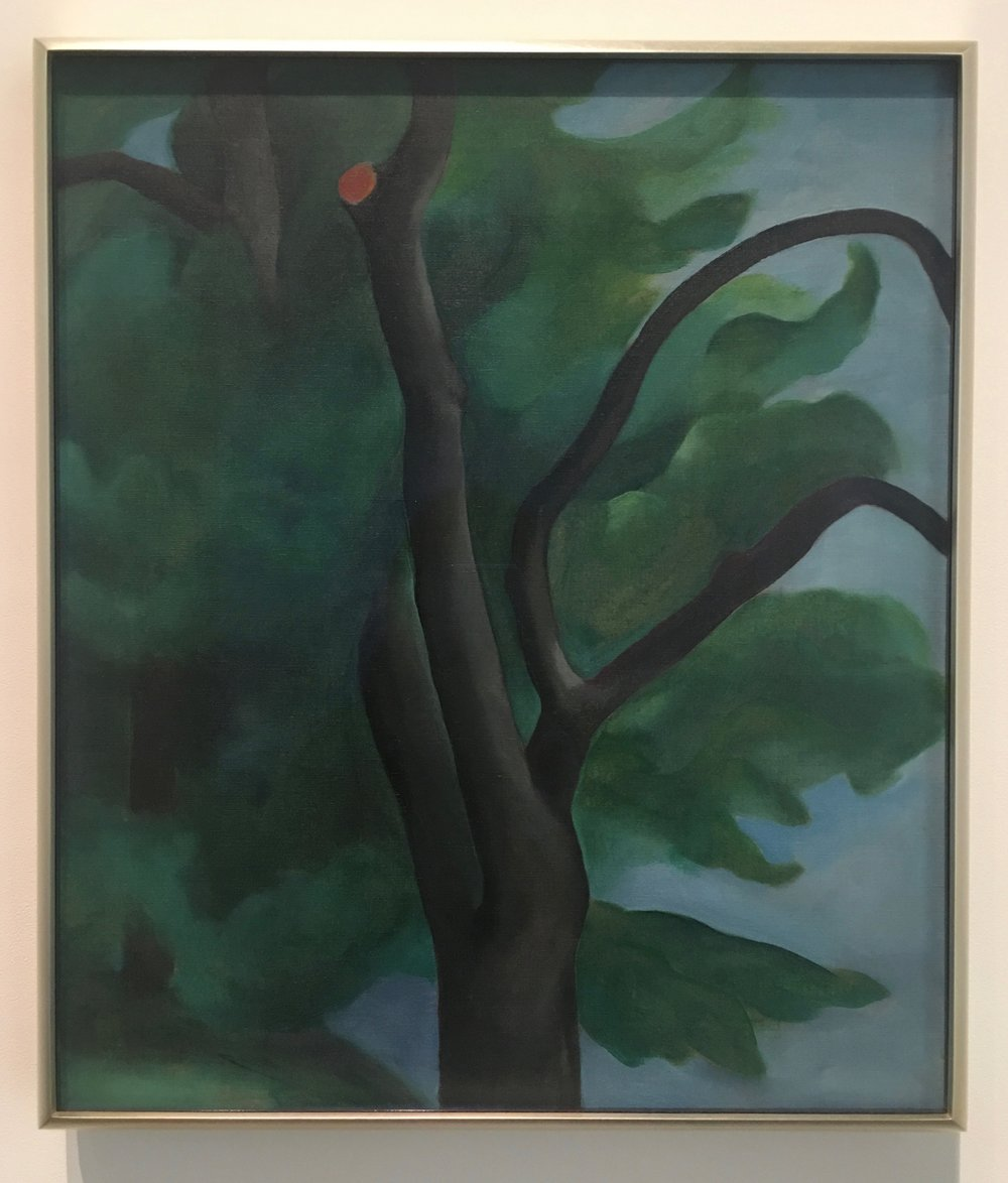 Georgia O'Keefe, Tree With Cut Limb, 1920, Oil on Canvas