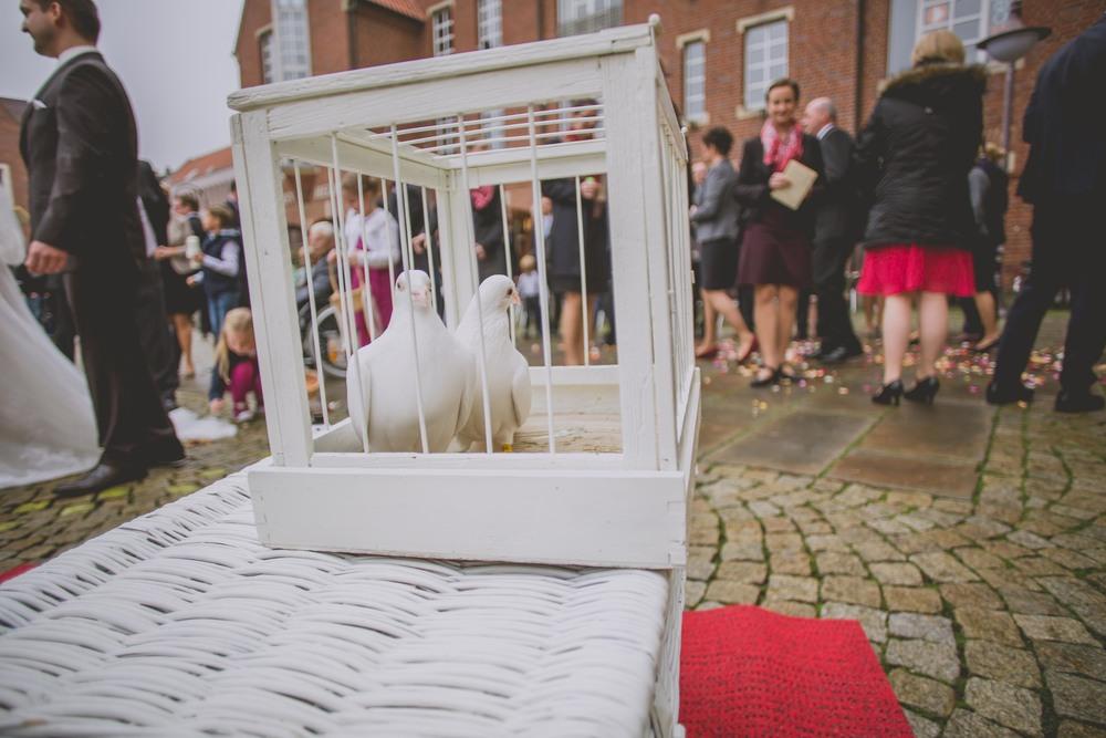 Buffalo-Wedding-Photography-by-Stefan-Ludwig10252014WEB-50.jpg