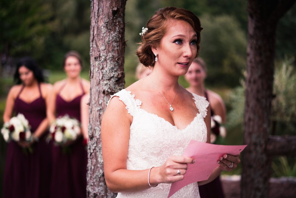 Blog-Lisa-James-Wedding-at Rosebud Estate Weddings in Arcade NY by Stefan-Ludwig-Photography-Buffalo-NY-42-x.jpg