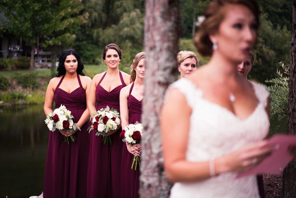 Blog-Lisa-James-Wedding-at Rosebud Estate Weddings in Arcade NY by Stefan-Ludwig-Photography-Buffalo-NY-43-x.jpg