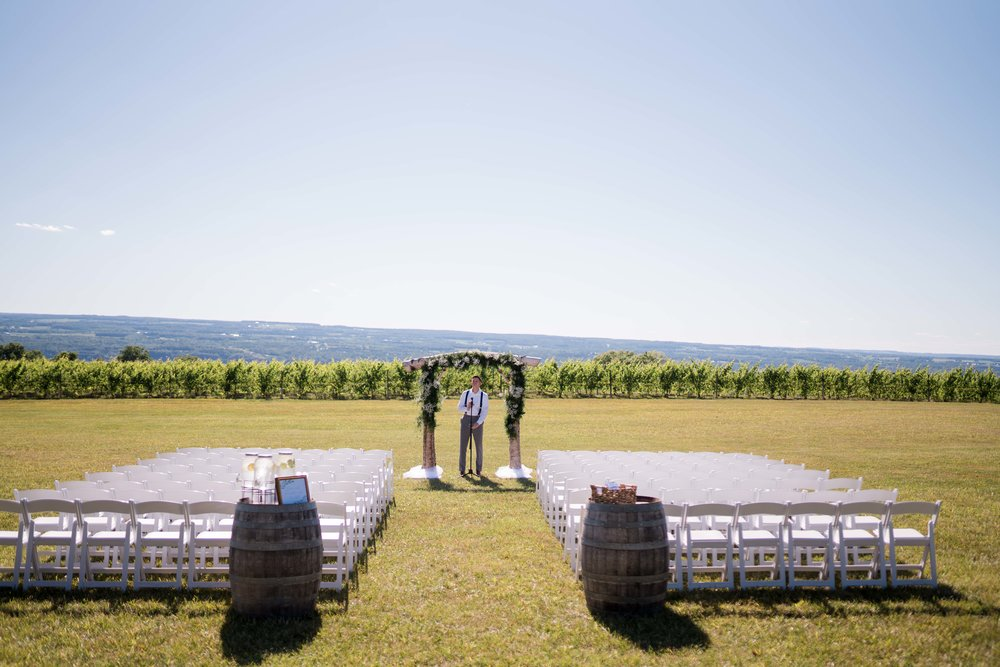 Wedding Photography at Wagner Vineyards Ginny Lee Cafe Finger Lakes by Stefan Ludwig Photography-49.jpg