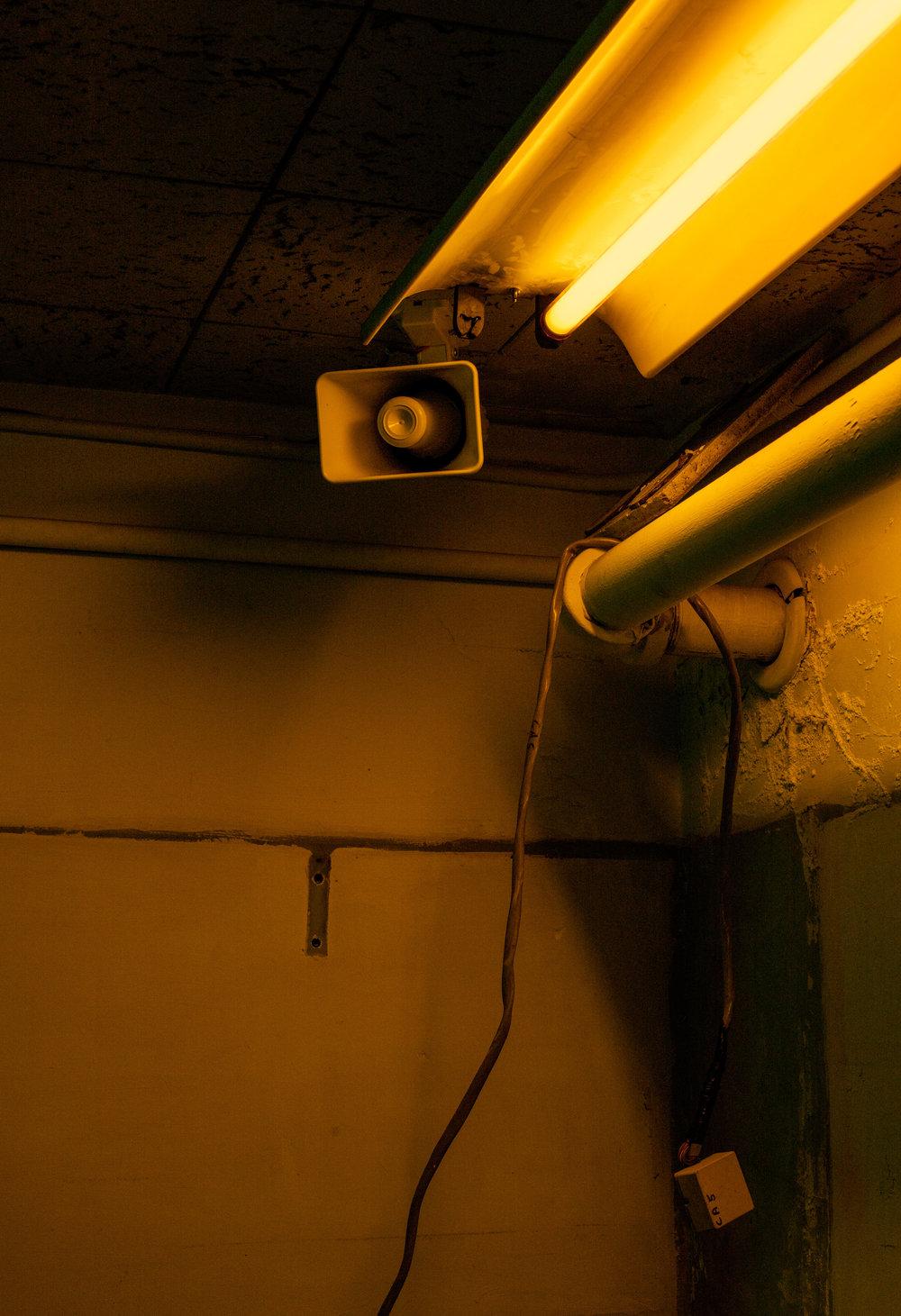 yellow-speaker-TBP_7273.jpg