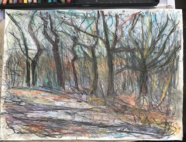 Down in the woods... slightly larger at A2, bit more space to breathe, trying to keep the drawing open #drawing #drawingtrees #southdowns #pastel
