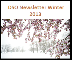 DSO LabetWinter 2013