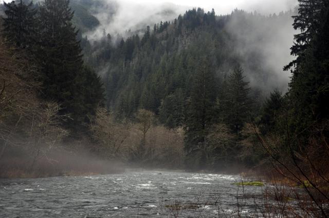 Misty river.jpg