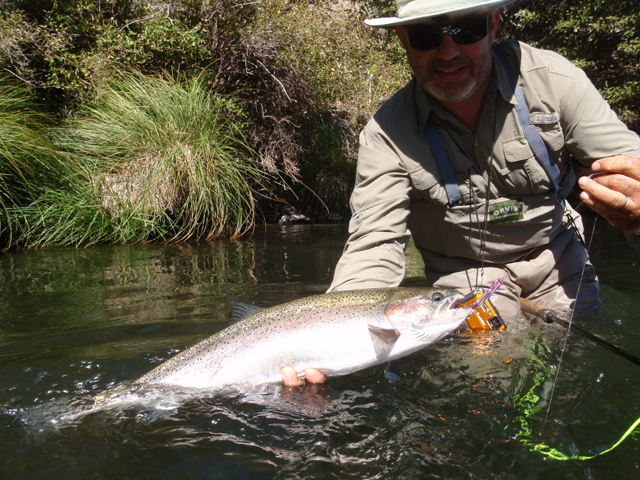 Carston Andre afternoon steelhead.jpg