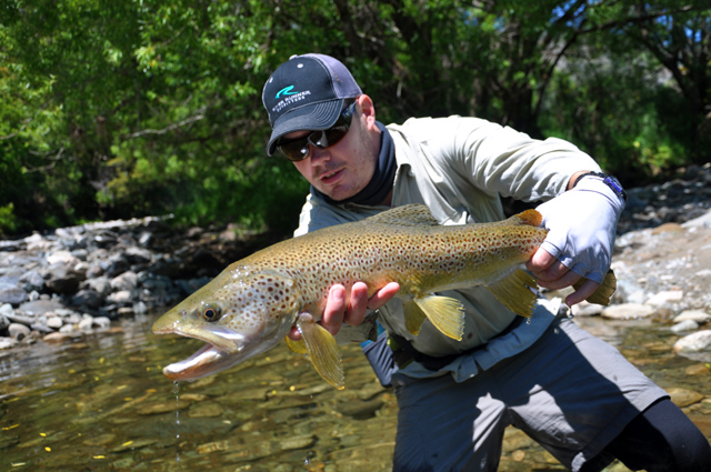 my first nz trout - mangles river.jpg