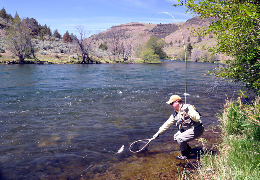 Fly fishing bend oregon river runner outfitters for Oregon fishing season
