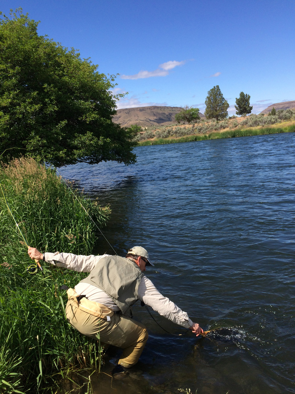 A classic moment in fly fishing when it all comes together.