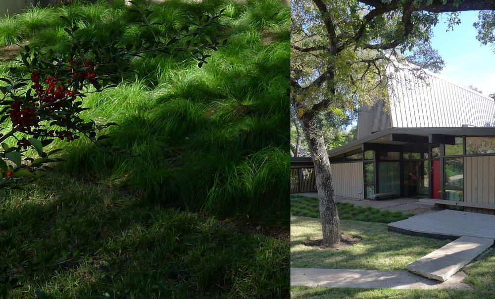 Webber + Studio // 3700 Lake Austin Boulevard