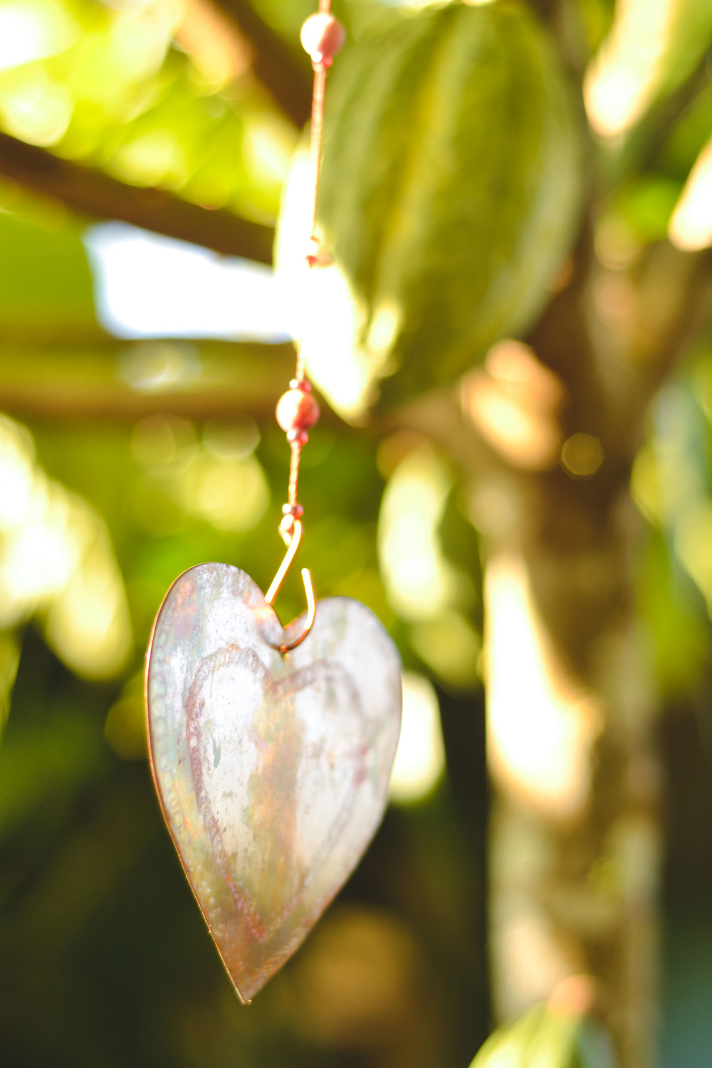 A metal heart hangs in front of a cacao pod