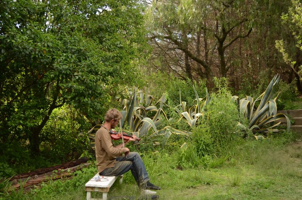 Tim playing his violin