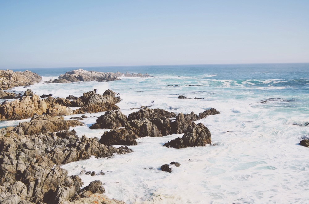 we walked along the coastline to get from the lunch spot to the busses. rugged beauty.