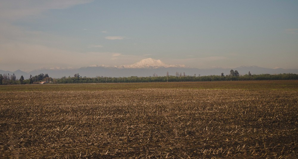 view from the train, heading from Santiago to Chillán // 22nd july