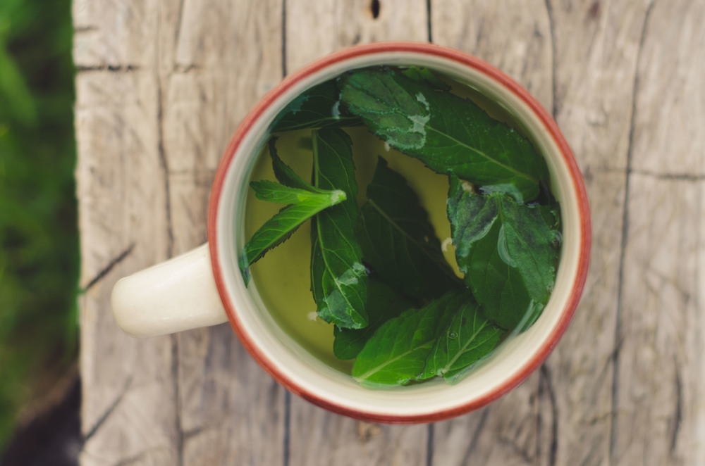 Mint tea -  té de menta  - with agave syrup, made from freshly picked leaves