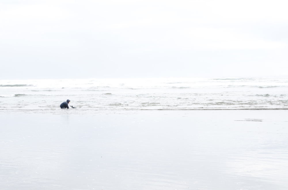 beach outside Chiloé National Park, where a woman is collecting seafood