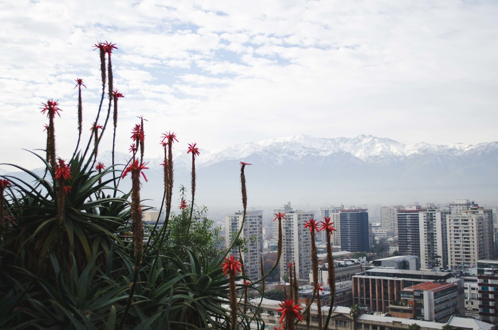Chile-5012-2.jpg