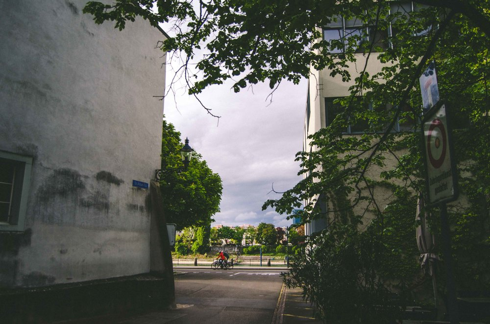 Looking towards the Rhine from the narrow road by the Basler Papiermühle // Basel Paper Mill