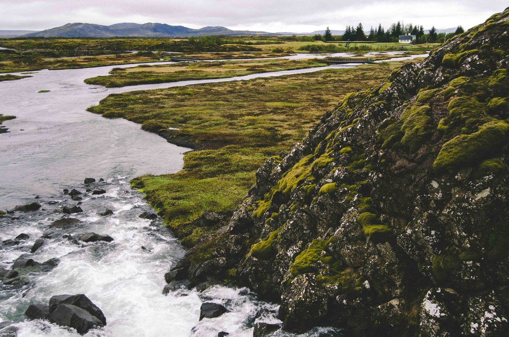Lush Þingvellir National Park