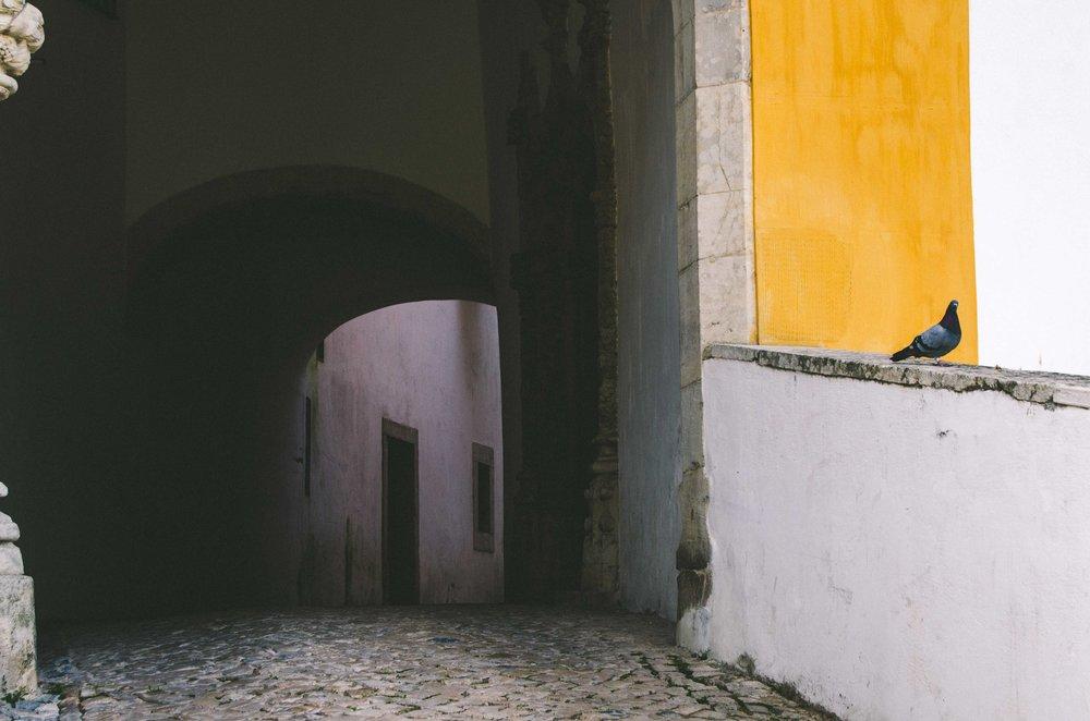 schoenmaker_portugalblog-20.jpg