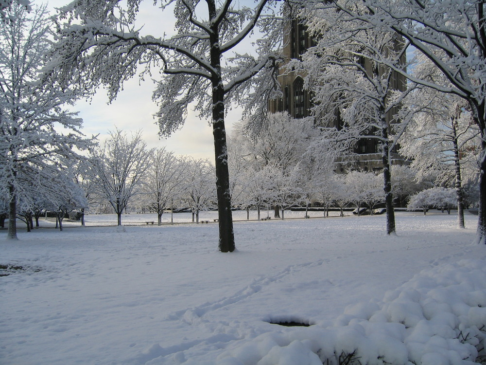 The University of Pittsburgh's Cathedral of Learning in winter. Photograph by Benjamin Hollis.
