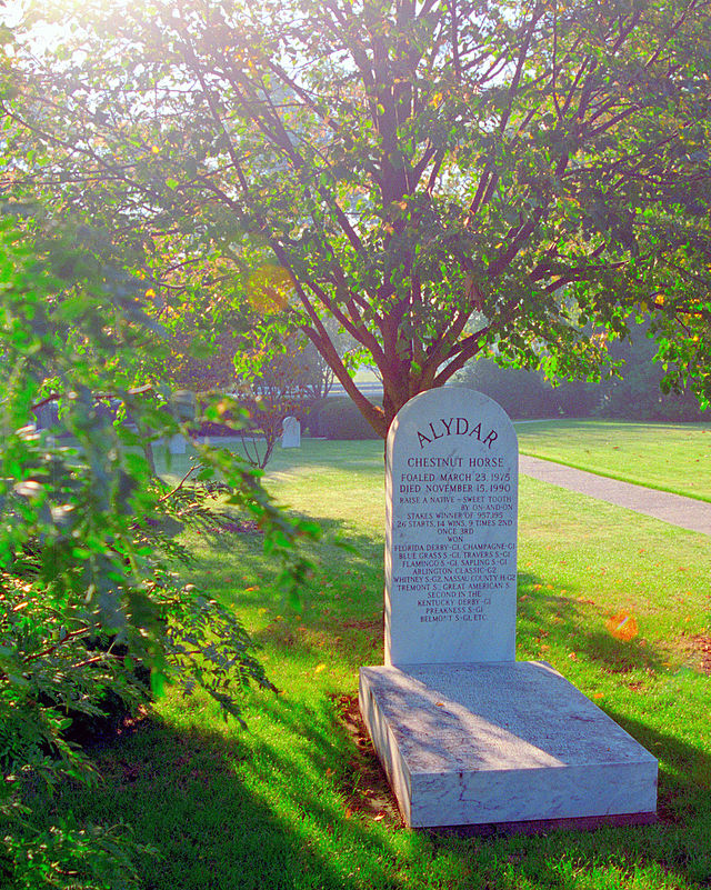The grave of Alydar, who finished second to Affirmed for the 1978 Triple Crown, at Calumet Farm, Lexington, Ky. Photograph by David Paul Ohmer.