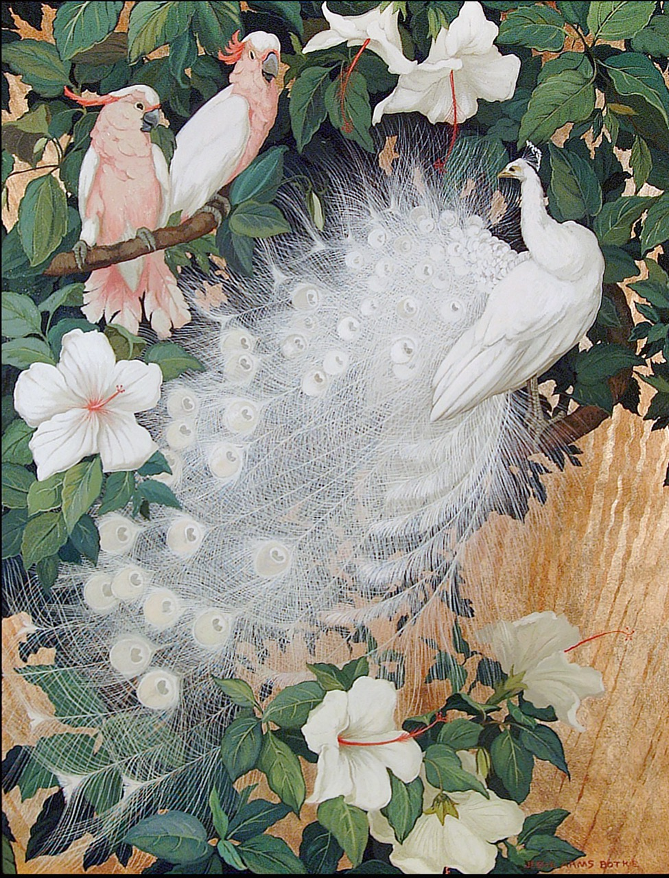 Albino Peacock and Two Cockatoo, c. 1930