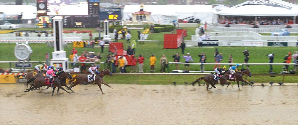 American Pharoah, far right, after his muddy Preakness win