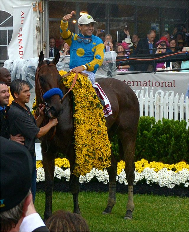 """American Pharoah, with Victor Espinoza aboard, after winning the Preakness. Will he be Sports Illustrated's """"Sportsman of the Year""""?"""