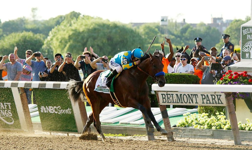 American Pharoah racing to Triple Crown glory at the Belmont. Photograph by Mike Lizzi.