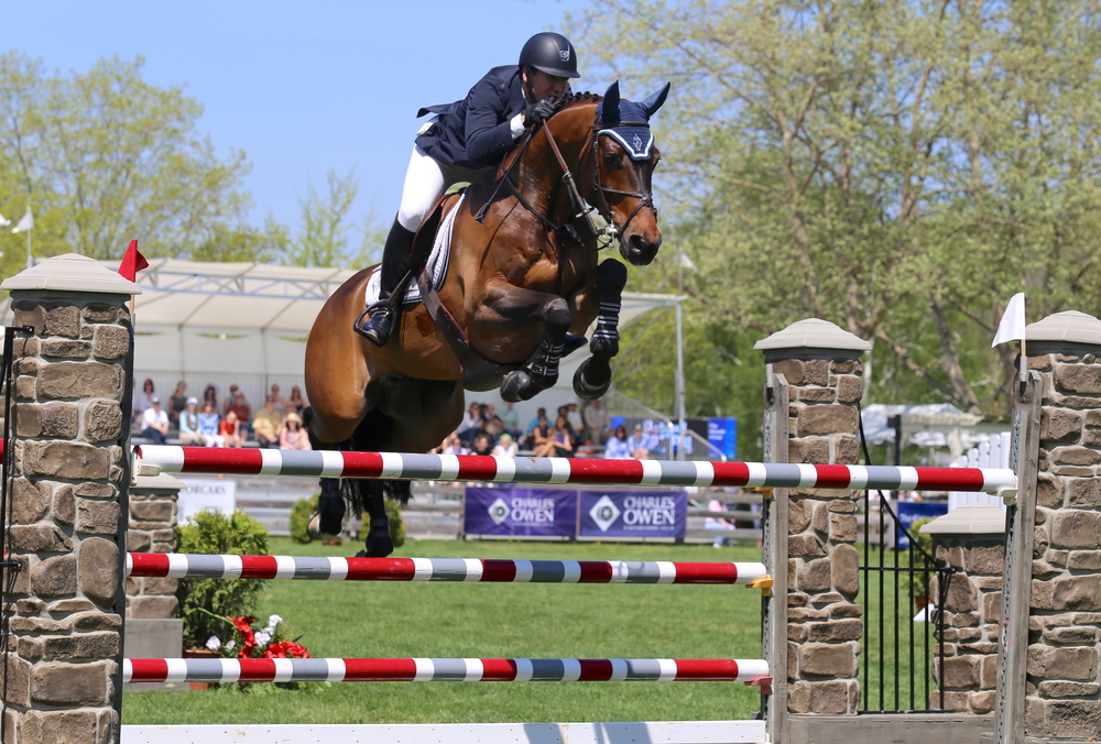 McLain Ward and HH Carlos Z: McLain Ward and HH Carlos Z show off in front of the crowd at Old Salem Farm. Photograph by Lindsay Brock for Jump Media.