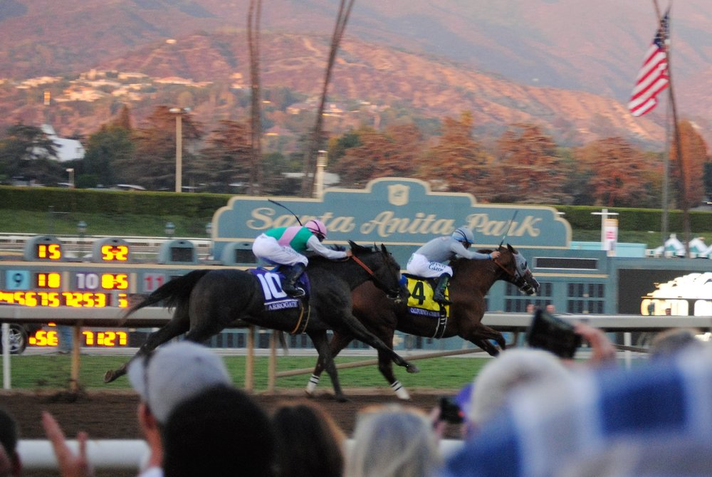 Arrogate (No. 10) about to overtake California Chrome in the Breeders' Cup Classic last year.