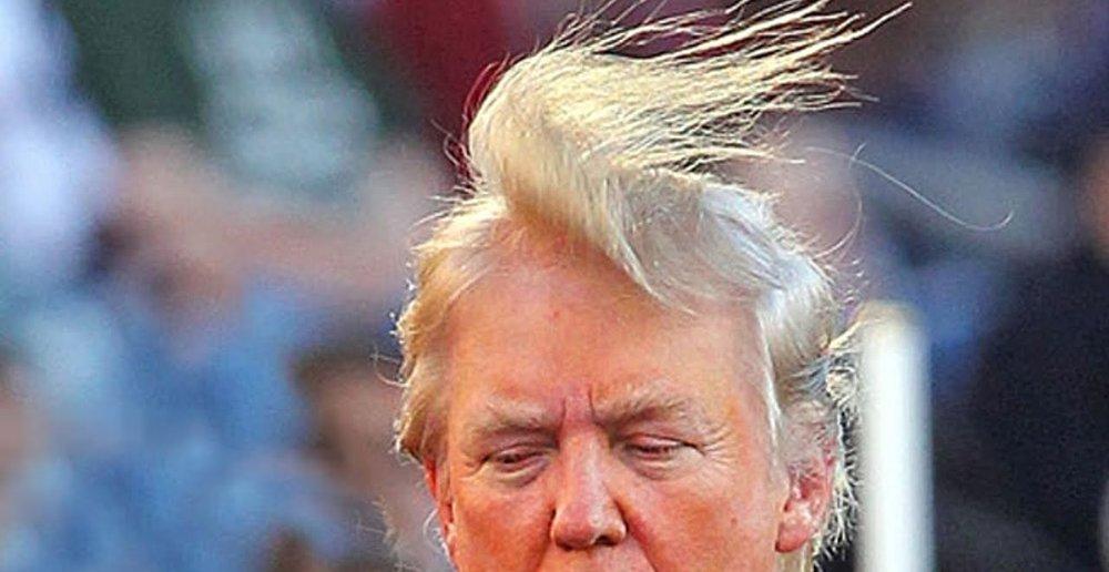 trump hair.jpg