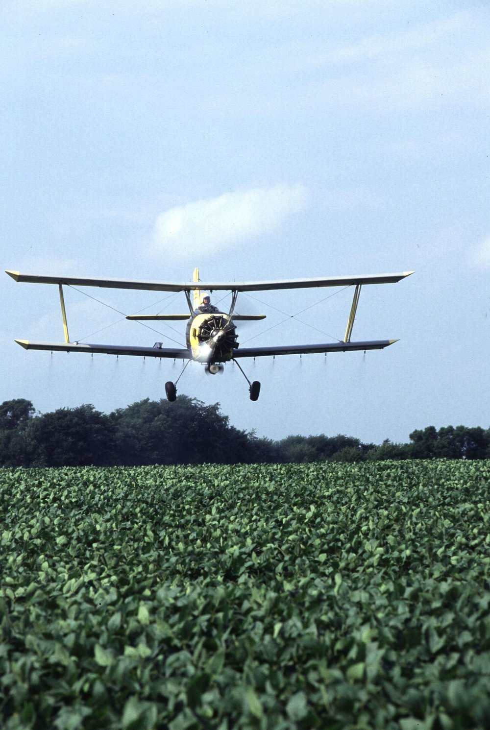 Biplane crop duster over an American soybean field, 2010. Photograph by Ken Hammond, U.S. Department of Agriculture.