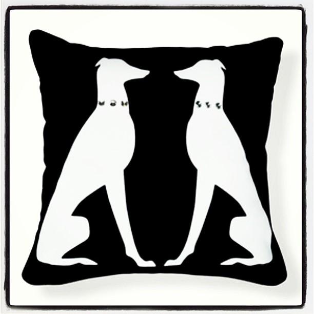 I love my greyhound pillow😘